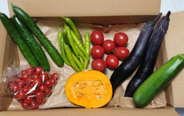 ほのぼの野菜ボックス