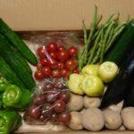 モリモリ野菜ボックス