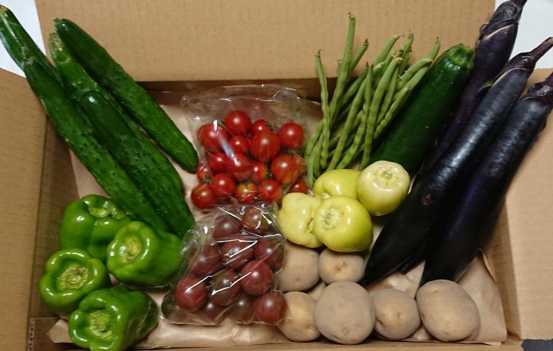 自然栽培で生産した野菜セット