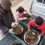 新規就農時の育苗土