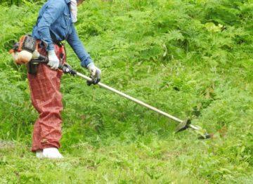 土手の草刈り